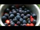 Sefe to see - новые витамины Vision для отличного зрения!