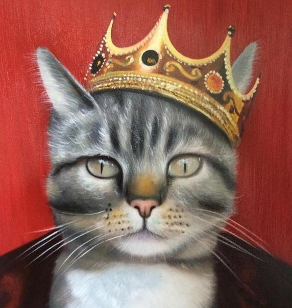 скопление королева кошка картинки фильм всю историю