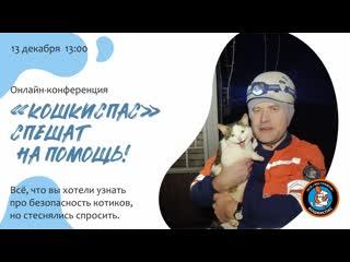 Беседа  с представителями Службы спасения животных Поисково-спасательного отряда «Эстремум» «Кошкиспас»