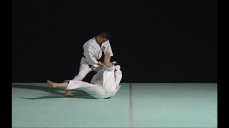 Waza 1 DAN Ryuka Ken Ryote Oshi Gote URA Kannuki Gatame Shorinji Kempo Black Belt