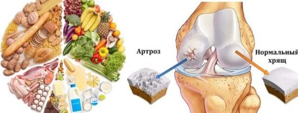 5 основных продуктов для суставов