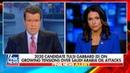 Tulsi Gabbard Nearly Made a Fox News Host's Head Explode