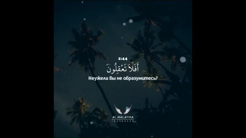 Reciter Абдур Рахман Мосад Surah Al Baqara