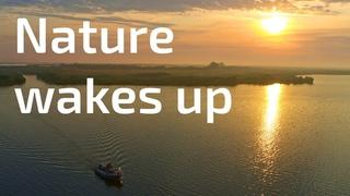 Nature wakes up / Природа просыпается