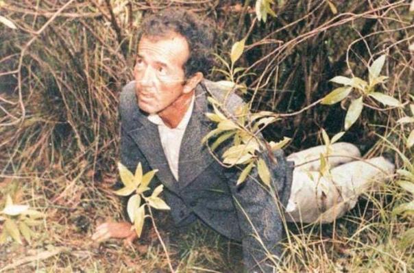 Даниэль Камарго Барбоса  «Манговый зверь»
