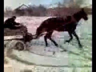 шок дед поехал крышей и дрифтит на лошади