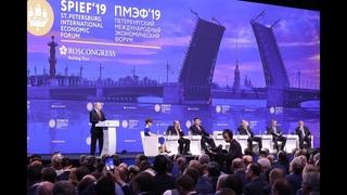 Стала известна стоимость участия в Петербургском международном экономическом форуме 2021 года