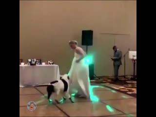 Свадебный танец с лучшим другом