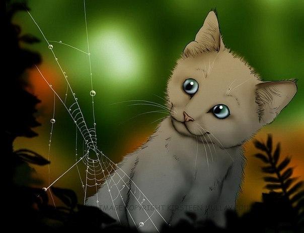 коты воители картинки всем привет