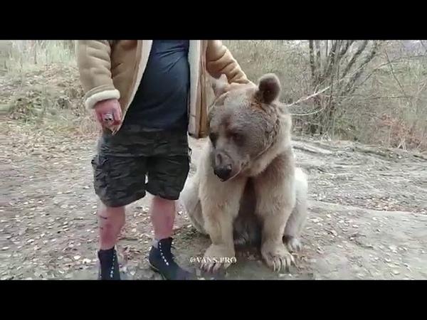 Wayne Howlett vs Russian Bear