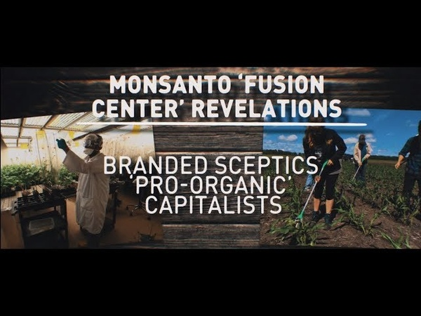 Monsanto dept worked to discredit critics journalists
