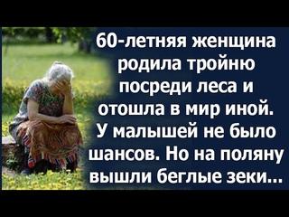 Беглый зек принял роды у 60-летней женщины прямо посреди леса. Но то, что он сделал дальше шокирует.