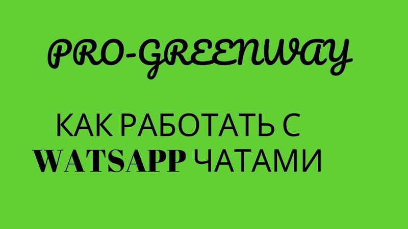 Как работать с чатами WatsApp