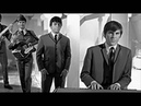 The Animals - House of the Rising Sun (1964) clip compilation ♫♥ 56 YEARS AGO