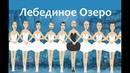 Танец маленьких лебедей - исполняют Мужчины - Анимация