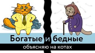 Богатые и бедные: объясняю на котах | Коты Ходорковского