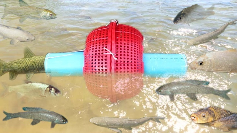 Wow!! Smart Girl Make Fish Trap Using PVC And Basket To Catch A Lot of Fish