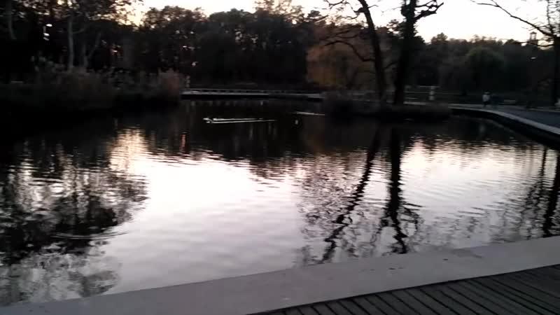 парк в Дебрецене