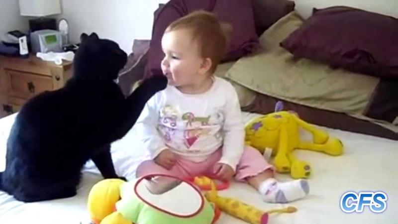 Кошки и дети Мега ПОЗИТИВ