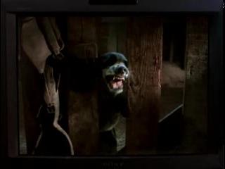 Счастливая пропажа Lost Found 1999 ▶ films4