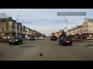 Подросток в Татарстане спас из-под колес автомобиля котенка, пытавшегося перейти дорогу.