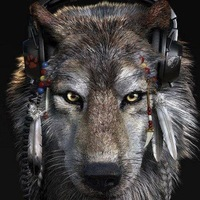 Влад Волк