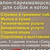 """ЗООСАЛОН """"МОДНЫЙ ПЕС"""" ПАРИКМАХЕРСКАЯ СОБАК И КОТ"""