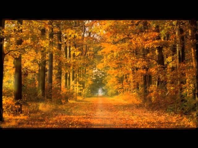 Autumn Leaves - Andre Rieu