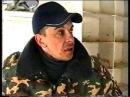Николаевские голуби Николая Агурбаша 1