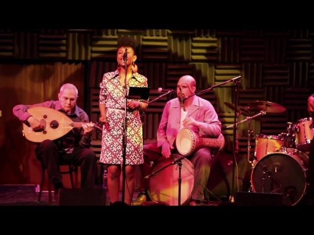 Alsarah The Nubatones - Joes Pub - Toshi Reagon Presents Good Folk-2