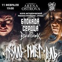 """Рок-фестиваль """"ТРОЛЛЬ ГНЁТ ЕЛЬ +"""" 11.02.2016"""