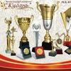 Наградная атрибутика: кубки, медали, сувениры