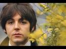 The Beatles - Mother Nature's Son - Lyrics