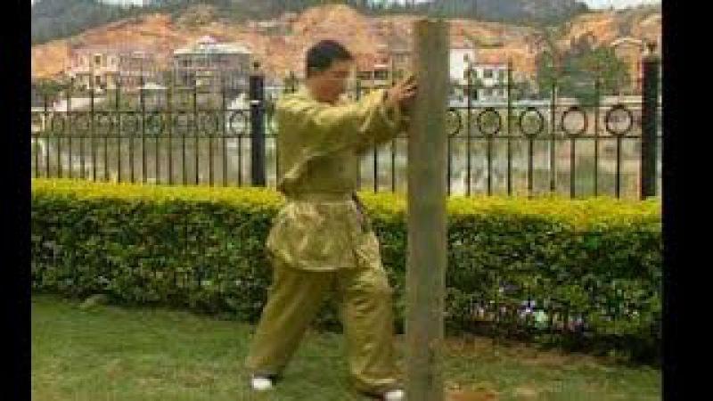 Тунбей цюань Тренировка со столбом