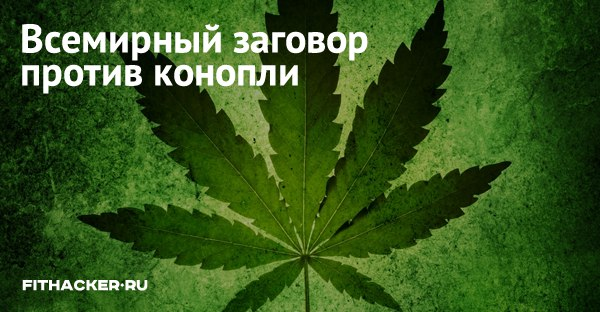 Заговор конопле чехол с марихуаной айфон 4
