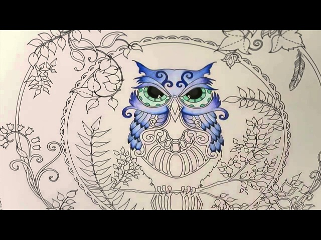 Enchanted Forest Coloring Book | Owl Part 1
