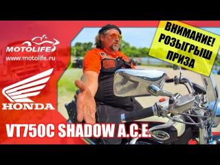 HONDA VT750C SHADOW .