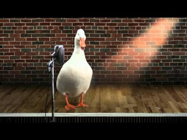 El Pato Willix Vídeo Curriculum
