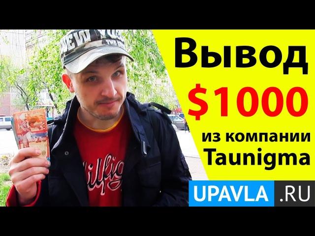 Taunigma | Лежу на Диване и Получаю Пассивный Доход уже 4 года! Таунигма!