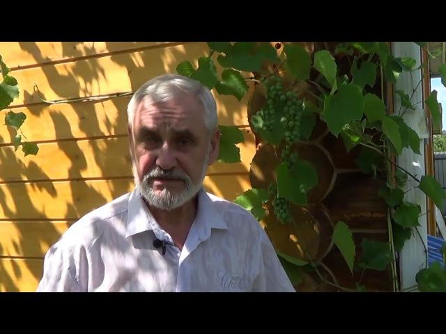Виктор Пошетнев Новости канала 13 07 17 Строить сознание