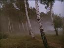 Государственная граница. Фильм 6. За порогом подеды 1987 Беларусьфильм 1 серия