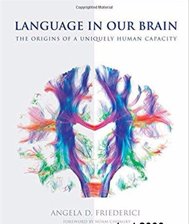 Language in Our Brain The Origins of a Uniquely Human Capacity (1)