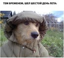 Анна Ростикова фото №1