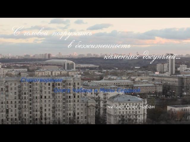Олег Чабан С головой погружаясь в… стихи Олега Чабана и Милы Сердной муз Рольфа Ловланда
