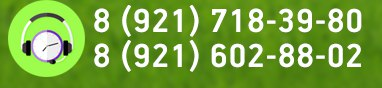 звонки.онлайн