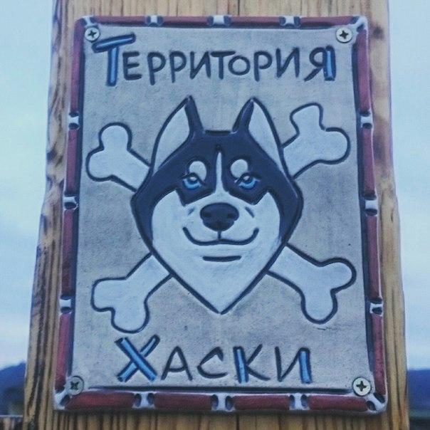 Светлана Кизяева фотография #1