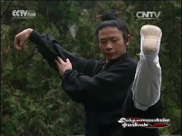 Китайские боевые искусства Удан кунфу Возникновение школы Нэй цзя
