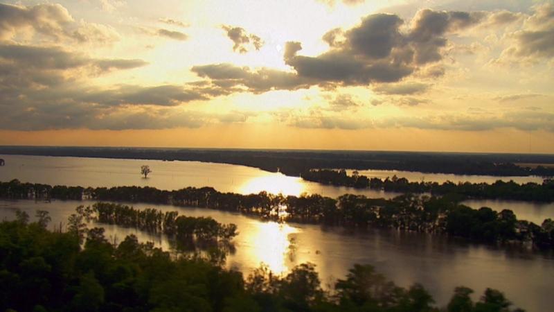 21 июня в 19:00 смотрите программу «Дикая природа Миссисипи» на телеканале HD Life