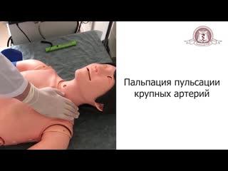 Учебный фильм Физикальное обследование ССС (ТюмГМУ, 2019)