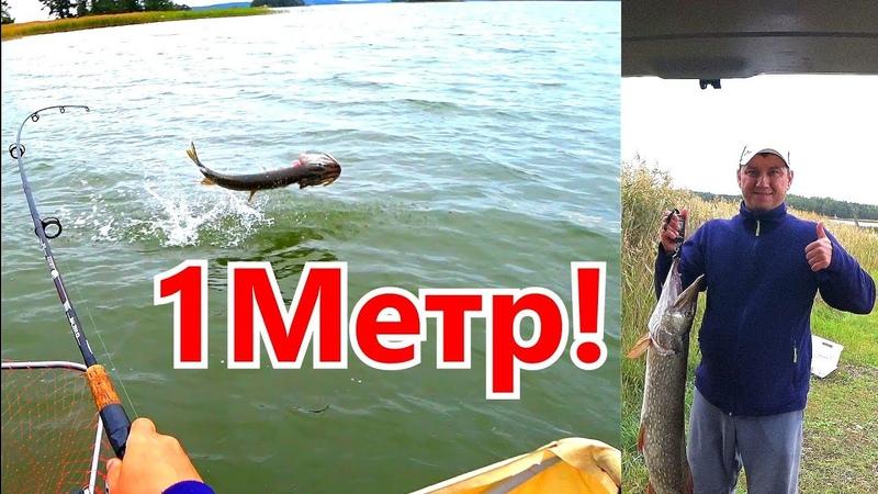 Супер Рыбалка На Щуку! Огромные Приманки rapala Рекорд Сезона